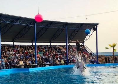 Agadir Dolphin World